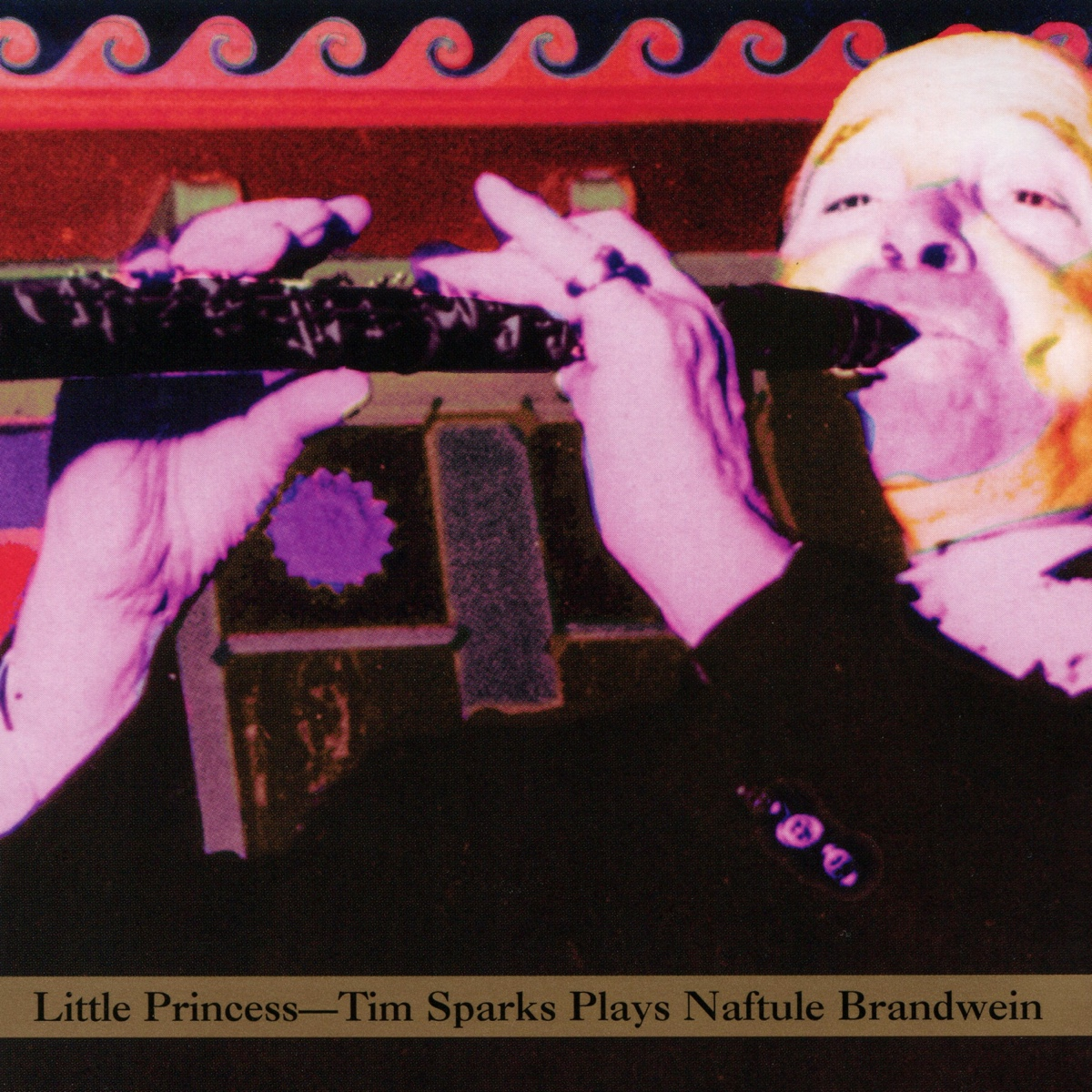 Little Princess - Tim Sparks Plays Naftule Brandwein.jpg