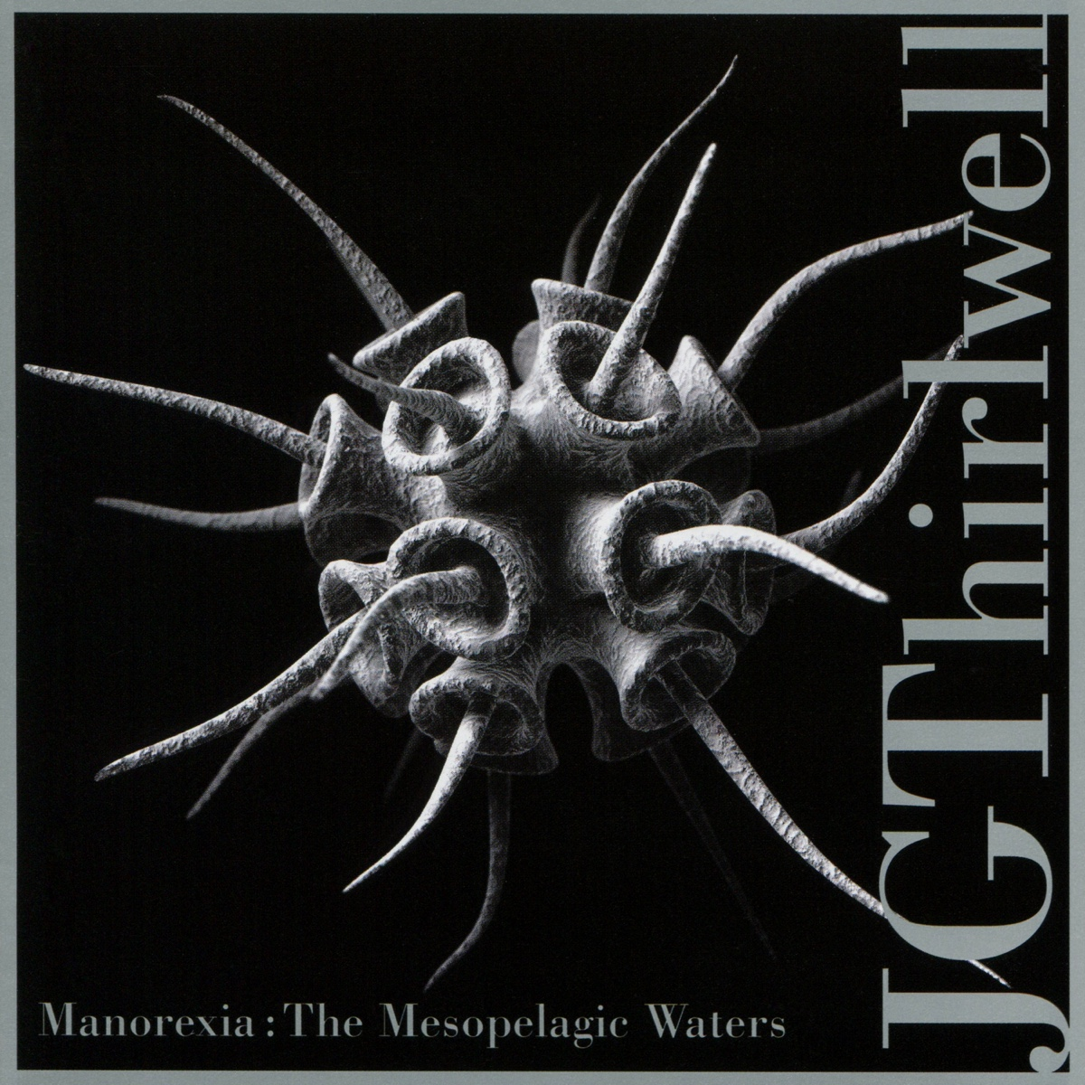 Manorexia-- The Mesopelagic Waters.jpg