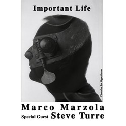 MarcoMarzola_ImportantLife.jpg